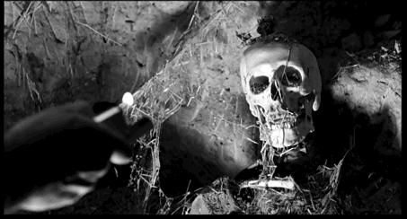 Carlos Saura, La Caza (1966): révélation de l'image vestiged'une chasse noire; Saura détourne le motif de l'apparition de la proie, conventionnel dans le récit de chasse.